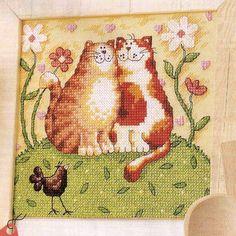Portal do Ponto Cruz: Casal de gatinhos