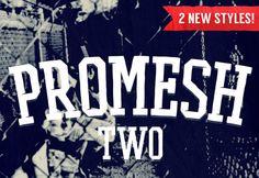 Promesh Two #Free #Font