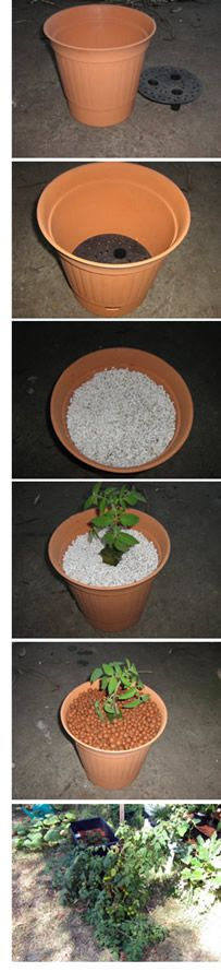 Using a self-watering/sub-irrigation planter as a hydroponic wicking pot. Aquaponics Kit, Hydroponics System, Growing Veggies, Growing Plants, Container Gardening, Gardening Tips, Self Watering, Houseplants, Make It Simple