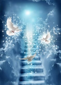 Holy Spirit Doves, stairway to heaven. Heaven Pictures, Jesus Pictures, Heaven Images, Angel Pictures, Beautiful Love, Beautiful Pictures, Jesus Christ Images, Saint Esprit, Prophetic Art