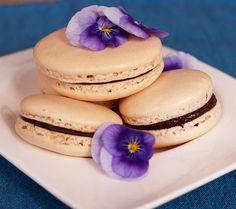 Easy Macarons @Orgasmic Chef