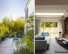 Architect: Karine Lewkowicz. Bamboo, container plants, deck garden.