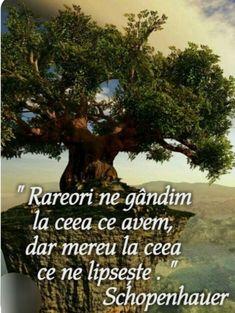 True Words, Spiritual Quotes, Book Quotes, Motto, Einstein, Philosophy, Texts, Spirituality, Wisdom