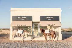 Gray Malin has shot new photographs for his popular series of Prada Marfa. Shot in Marfa Texas of the acclaimed art installation, Prada Marfa. Texas Photography, Fine Art Photography, Beige Aesthetic, Retro Aesthetic, Photo Wall Collage, Picture Wall, Marfa Texas, Prada Marfa, Two Horses