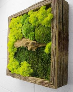 Items similar to Green Bridge - Water free green wall art, moss and preserved plants - Vertical garden, green wall decor - Rustic Frame on Etsy