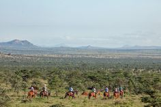 Olepangi Farm Cottages, Timau, Laikipia - East African Retreats Private Safari, Mount Kenya, Farm Cottage, Horse Farms, Tanzania, Perfect Place, Acre, Dolores Park, African