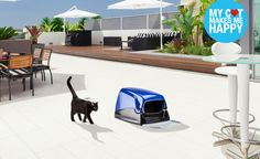 Cat litter Box www.airdesignpets.com