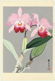 Original Zuigetsu Ikeda (1877 - 1944) Japanese Woodblock Print   Bright Pink Orchids   First Edition