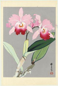 Original Zuigetsu Ikeda (1877 - 1944) Japanese Woodblock Print Bright Pink Orchids First Edition