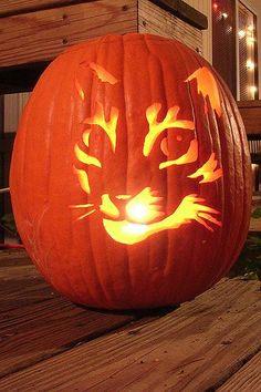13 Cat Pumpkin-Carving Ideas for Halloween | Catster (For fellow cat freaks like me!)