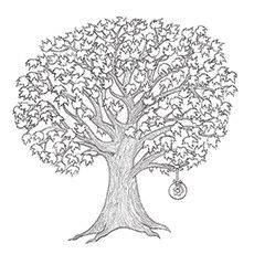 maple tree coloring pages - photo#16