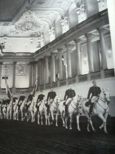 Spanish Riding School in Vienna Lipizzan, Spanish Riding School, White Horses, Crazy Horse, Art Of Living, Beautiful Horses, Vienna, Austria, Equestrian