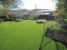 EasyTurf at Cesar Millan's Dog Psychology Center in Santa Clarita, CA. www.easyturf.com l artificial turf l fake grass l dog friendly l dog whisperer l pet approved l dog grass