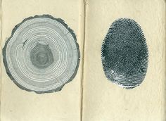 """freeyourssoul: """" beautifulurself: """" i don't know where this image originates, but it's been on my mind a lot lately. finger prints and tree rings. identifiers of life lived. Thumbprint Tree, Thumb Prints, Tree Rings, Book Projects, Art Sketchbook, Sacred Geometry, Art Lessons, Book Art, Illustration Art"""