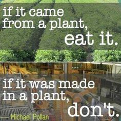 """Michael Pollan nutrition quote """"If it came from a plant, eat it. If it was made in a plant, don't. Nutrition Quotes, Health Quotes, Health And Nutrition, Health And Wellness, Health Fitness, Food Quotes, Holistic Nutrition, Health Sayings, Vegan Quotes"""