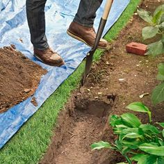to Edge a Garden Bed With Brick Gardening tip: Place the tarp over your grass to collect soil as you dig.Gardening tip: Place the tarp over your grass to collect soil as you dig. Brick Garden Edging, Garden Pavers, Lawn Edging, Garden Shrubs, Lawn And Garden, Garden Beds, Sidewalk Edging, Brick Landscape Edging, Landscape Steps