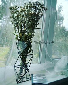 Флорариум. Террариум. Декор дома. Ваза для цветов. Комнатные растения.  Flowers. Decorativ. Interior.