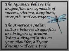 The Story of the Dragonfly