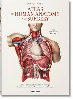 Atlas of Human Anatomy and Surgical procedure by Jean-Marie Le Minor and Henri Sick – free medical books Interior Design Books, Book Design, Interior Styling, Good Books, Books To Read, Sick, Medical Pictures, Most Popular Books, Medical History