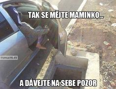 Tak se mějte maminko… Good Jokes, Funny Jokes, Jokes Quotes, Memes, Night Fury, Funny Photos, I Laughed, Haha, Entertaining