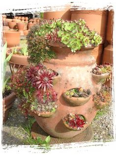 Wholesale pottery mexican pots outdoor rustic pots for Little baja pottery