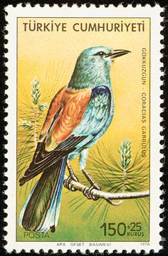 European Roller stamps - mainly images - gallery format