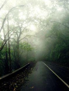 Misty Bali.  Somewhere in the middle of my road trip from Lovina Beach to Bedugul, Bali Island. #MyBeautifulindonesia