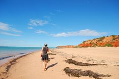 Francois Peron NP Western Australia, Shark, Attraction, Red And White, Landscape, World, Natural, Beach, Places