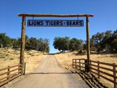 Lions, Tigers and Bears, a Big Cat Rescue sanctuary in Alpine, CA