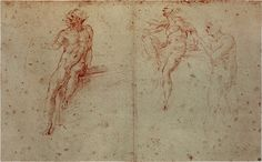 anatomy study by Michelangelo --- Anatomy Study, Anatomy Drawing, Miguel Angel, High Renaissance, Anatomy Poses, Italian Painters, Michelangelo, Old Master, Great Artists