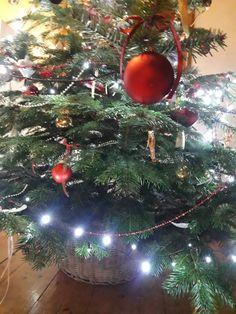 Christbaum im weißen Korb toll   alle Kabel gut verstaut Christmas Wreaths, Christmas Bulbs, Christen, Holiday Decor, Home Decor, Cable, Basket, Trees, Christmas Garlands