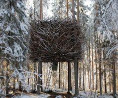 Bird's Nest Treehouse in Harads, Sweden