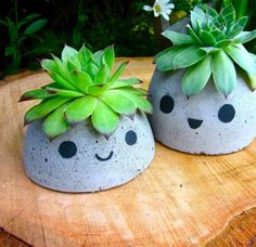 These concrete succulent planters are made by pouring concrete mixture into a mold made completely from recycled materials. Decorate the face as you please and top with a healthy succulent hairdo.
