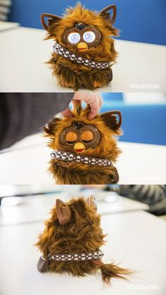 The Chewbacca Furby Is Coming This Fall   Your first thought on seeing this Chewbacca Furby might be that someone did a really good custom job. Turns out, Chewby / Furbacca will be sold by Hasbro for $79.99 come Fall. As with other Furbies, you'll be responsible for feeding, bathing and playing with him through an app available for iOS or Android.  Read more at http://nerdapproved.com/toys/the-chewbacca-furby-is-coming-this-fall-video/#YqsGIu0YLPcRbHWj.99