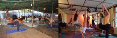Standard Yoga course Training Programs india