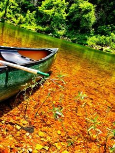 Canoeing on the Buffalo River- This week's photo winner!