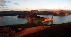 Today I'd go ... to the Galapagos Islands