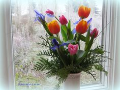 Spring flowers against a frosty window. Bare Mtn Farm