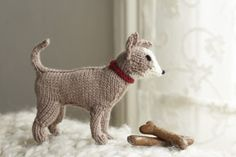 Chihuahua from Best in Show: 25 More Dogs to Knit by Sally Muir and Joanna Osborne, published by Pavilion.