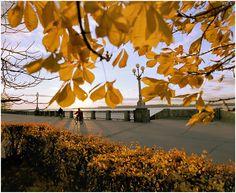 Просмотр фотографии - Осень на набережной | Категория - Город - Samara-Photo