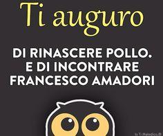 W Francesco Amadori