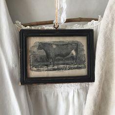 Mini Cow Print in Black