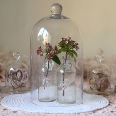 Glass Dome Bell Jar Cloche - i think they look fab