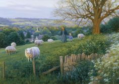 """Cotswold Evening"" by Robert Duncan"