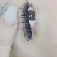 Whispy lashes Kim - K look - We offer online course on this whispy lashes look effect . Visit website for more info - Eyelash Extensions Styles, Whispy Lashes, Eyelash Studio, Kylie, Eyeshadow Tips, Best Lashes, Eyelash Growth, For Lash, Make Up