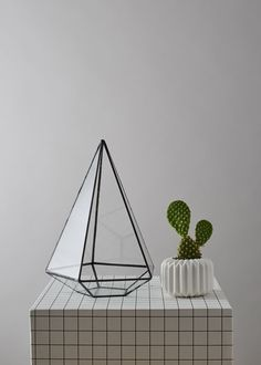 Teardrop Geometric Terrarium by geofleur on Etsy  We think this terrarium is absolutely stunning! Check out their shop!   https://www.etsy.com/shop/geofleur