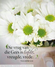 Die vrug van die Gees is liefde, vreugde, vrede. Prayer Verses, Bible Verses, Jesus Our Savior, Walk In The Spirit, Afrikaans Quotes, Bday Cards, Grain Of Sand, Living Water, Special Quotes