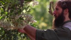 Healing from the Garden. Master herbalist Nathaniel selects herbs at @The Lodge at Woodloch ...A Destination Spa Resort