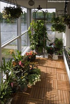 60 ways to turn your tiny balcony into an irresistible outdoor space 2019 page 25 Small Balcony Decor, Small Balcony Garden, Small Balcony Design, Balcony Plants, House Plants Decor, Terrace Design, Rooftop Garden, Garden Design, Small Balconies