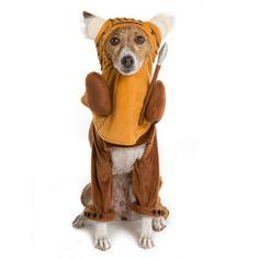 Star Wars™ Pet Halloween Running Ewok Pet Costume | Costumes | PetSmart